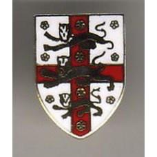 Значок Ассоциации Футбола Англии