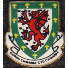 Значок Федерации Футбола Уэльса