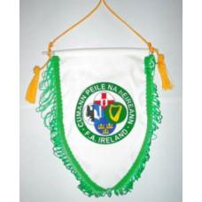Вымпел Федерации Футбола Ирландии